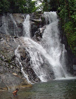 Ecotour Activities - jungle waterfall